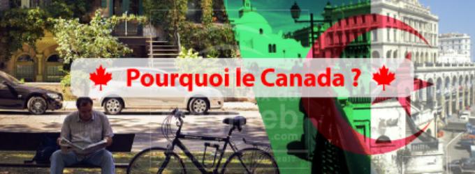 Voici pourquoi les Algériens veulent immigrer au Canada.